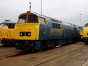 D1023 Western Fusilier - 11-9-05 - Crewe Works