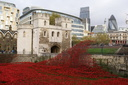 Blood Swept Lands and Seas of Red - 8-11-14 - Tower of London (27)