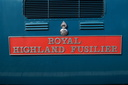 ROYAL HIGHLAND FUSILIER - 55019